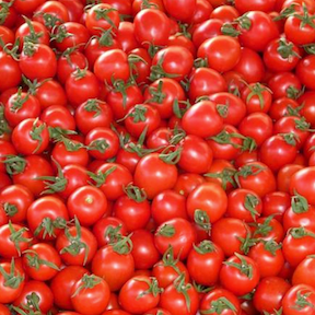 14 Million Tons of Tomatoes