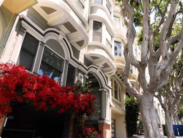 Street View SF