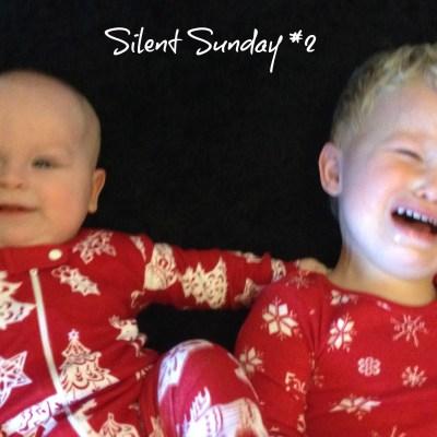 Silent Sunday #2