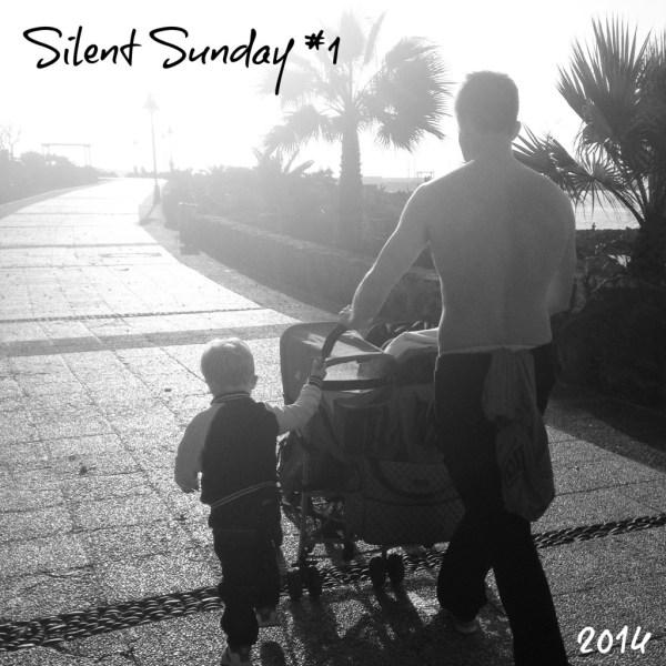 2014SilentSunday1