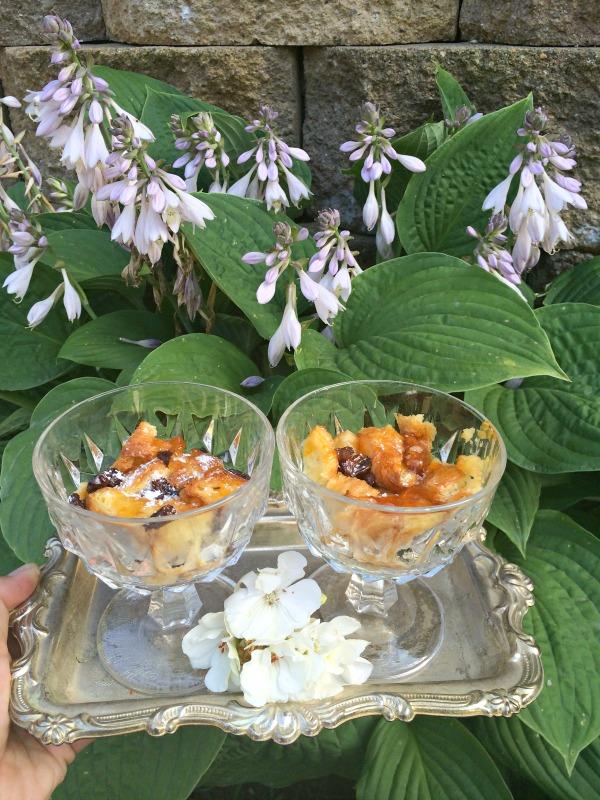 croissant raisin pudding recipe with apricot