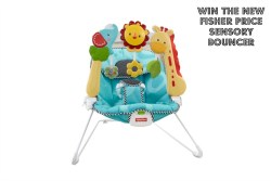 fisher price sensory bouncer