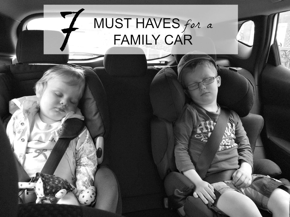 7 must haves for an ideal family car travel  adventures