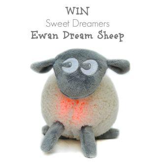 Win a Sweet Dreamers Ewan Dream Sheep Grey fleece stuffed animal