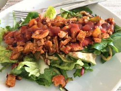 Chicken Salsa & Avocado Salad Recipe Oxo Good Grips GreenSaver Review