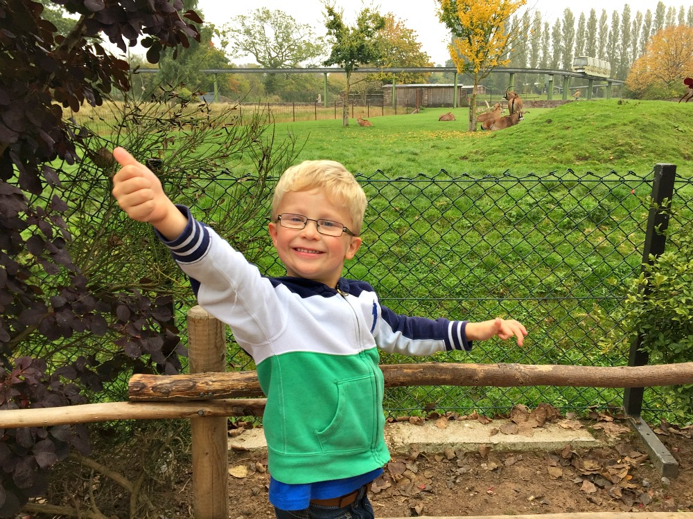 Family fun at Chester Zoo