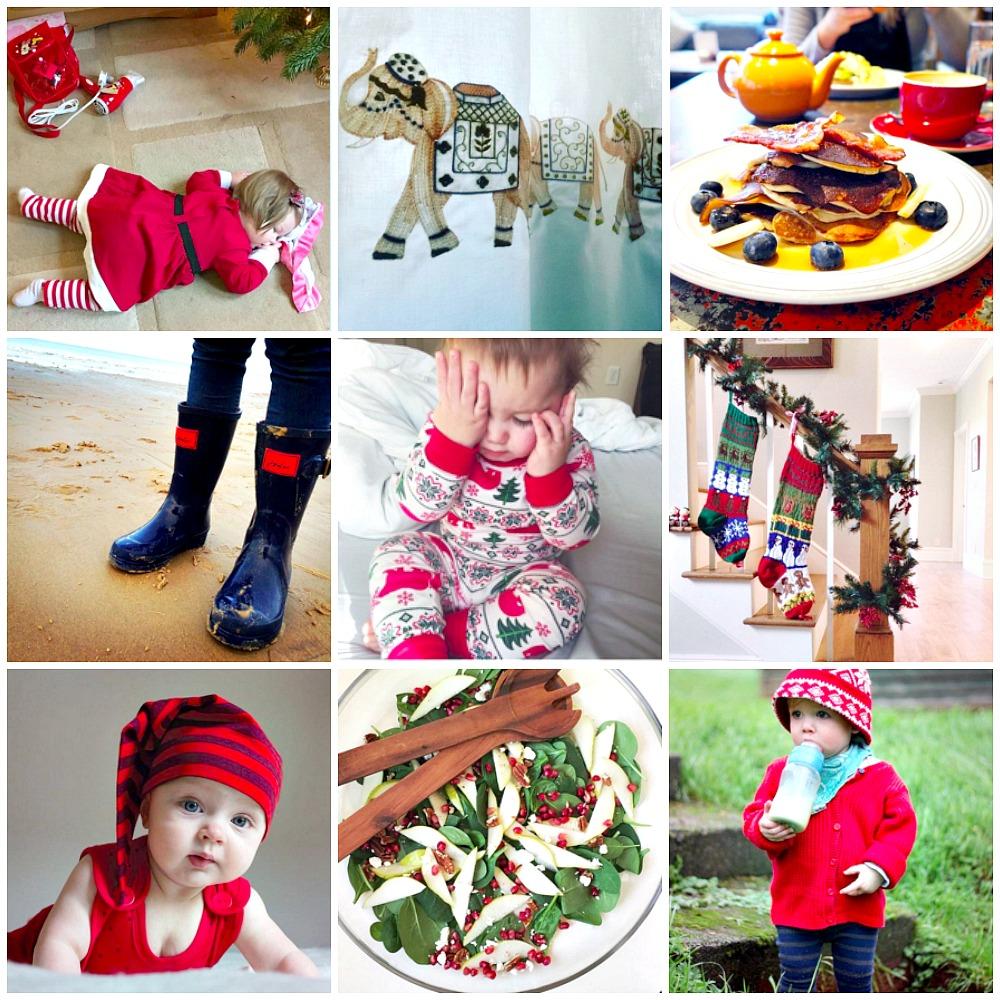 Celebrations #lifecloseup an instagram community hashtag