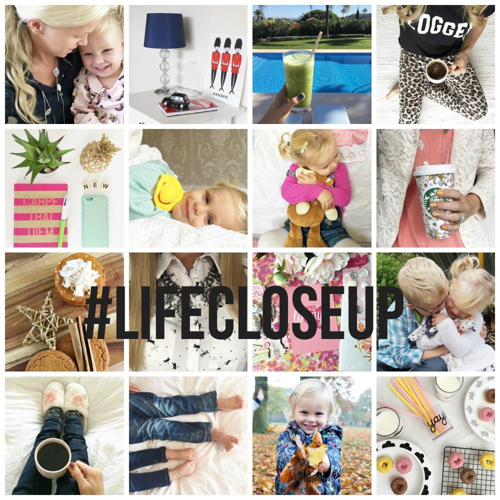 Life Close Up on Instagram #lifecloseup