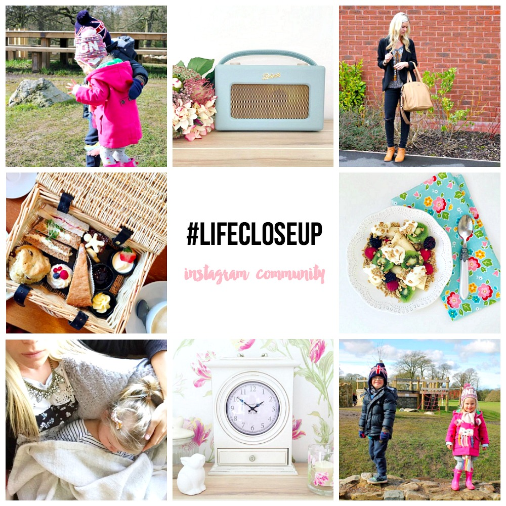 Taking a moment #lifecloseup an instagram community
