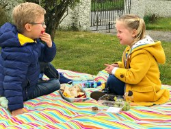 picnic days 2