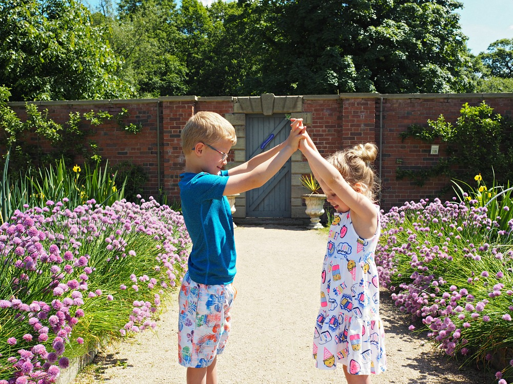 The Siblings Project linky with Dear Beautiful Blog #siblingsproject A day at the park