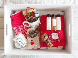 A Christmas Goodie Box for Guests Wayfair