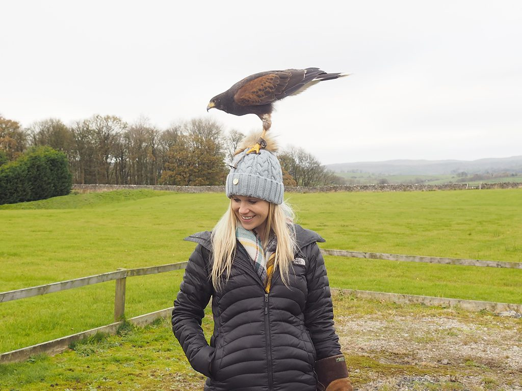 Coniston Hotel Country Estate and Spa falconry afternoon 4x4 off roading