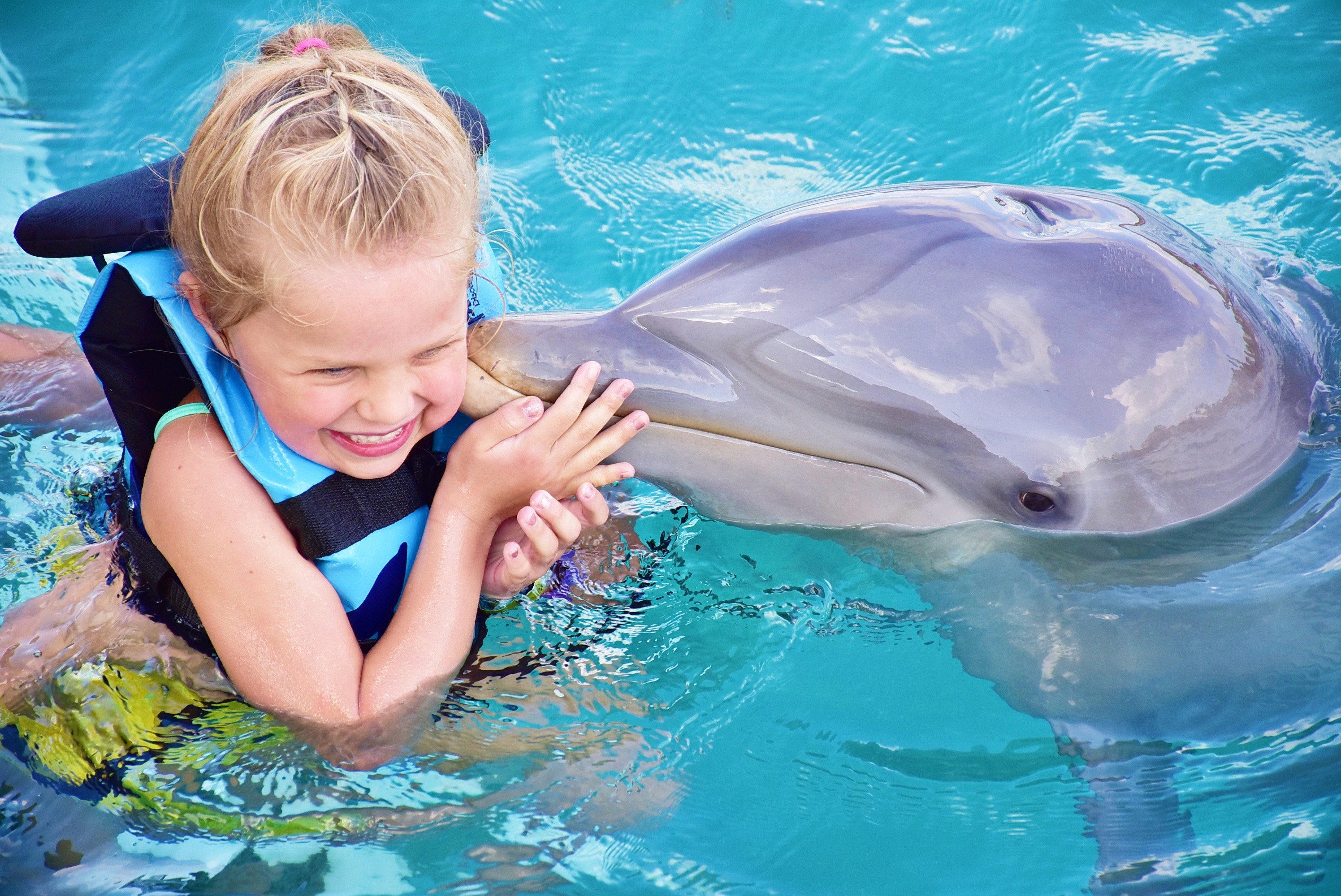 Isla Mujeres and Dolphin Tours Mexico