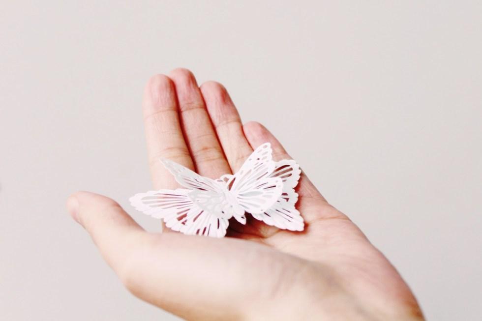 motylowe love