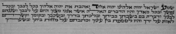 The tefillin scroll from the one that goes on the forehead, containing the first paragraph of the Shema. Note how the letters