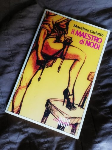 Il libro giallo della serie l'alligatore di massimo carlotto