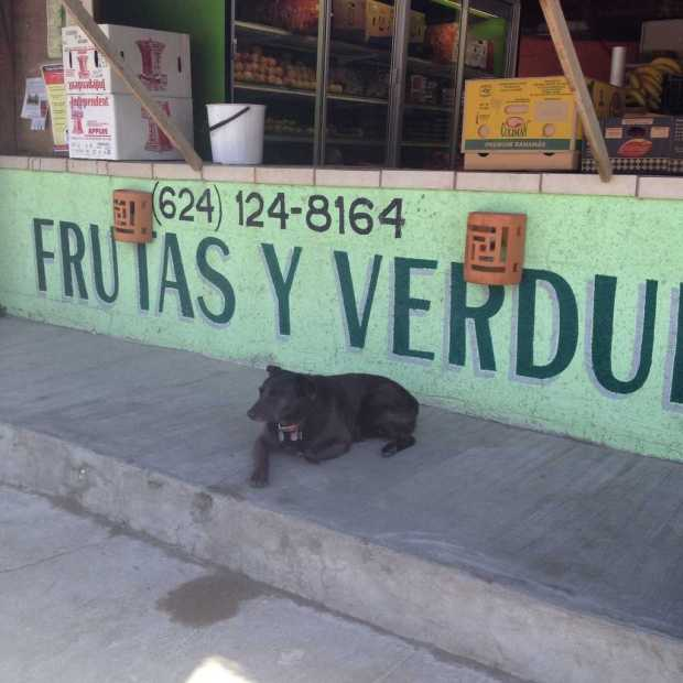 fruit and vegetables store in Baja