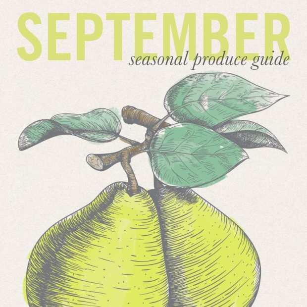 September Eat Seasonal print for Melon Raspberry Soda Float | Letty's Kitchen