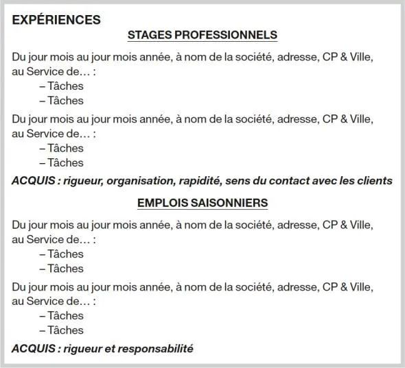 experience professionnelles cv stage