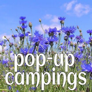 trend: pop up campings.jpg
