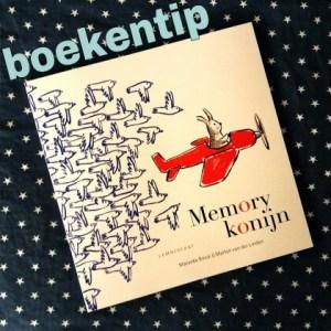 wpid-boekentip-memorykonijn-boek-en-spel-ineen.jpg.jpeg