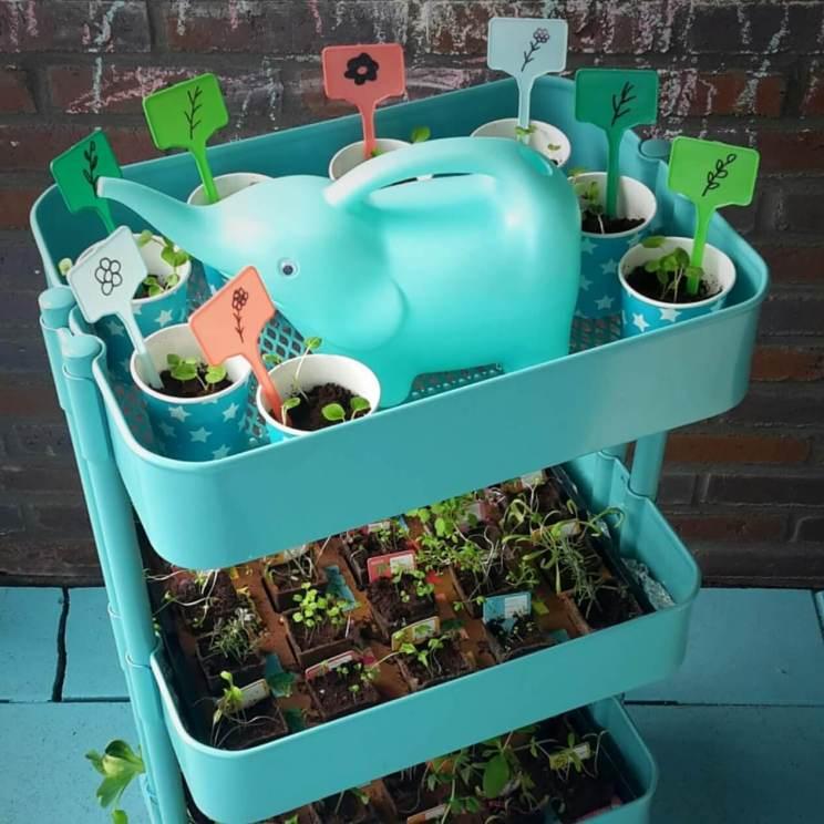 Plantenbakken voor moestuintjes ideeën om te knutselen en uit de winkel. `De Ikea Raskog trolley is ideaal om moestuintjes te kweken.