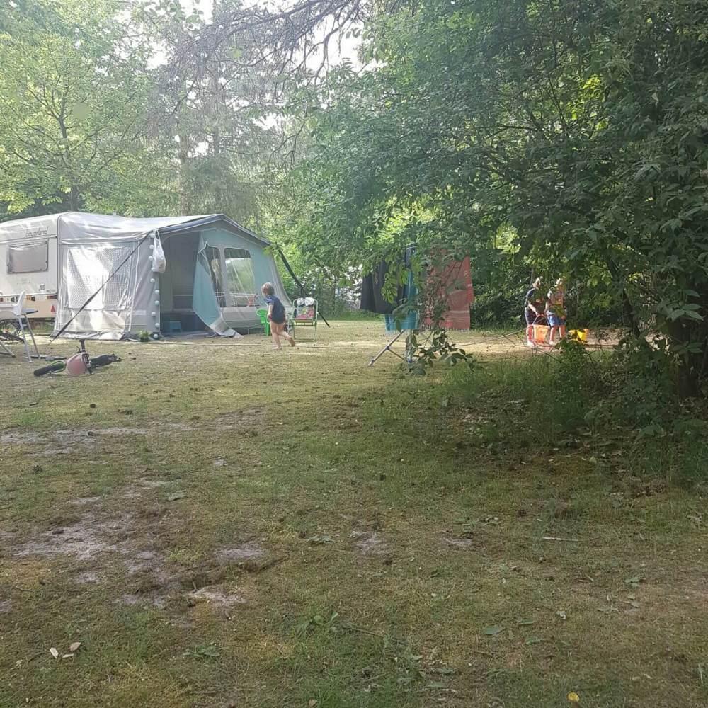 Campingtip: De Wildhoeve op de Veluwe, in Emst bij Epe en Apeldoorn