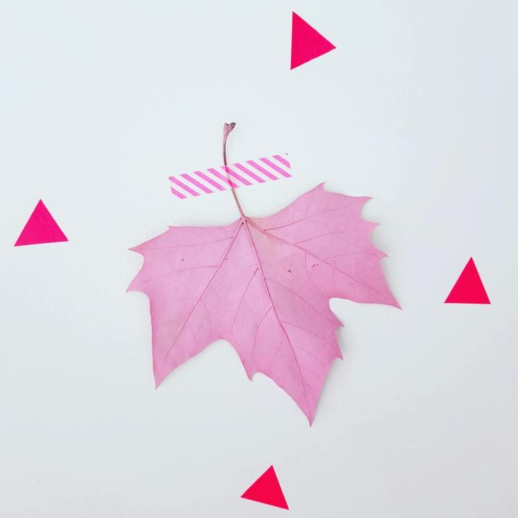 Herfst decoratie knutselen: bladeren verven