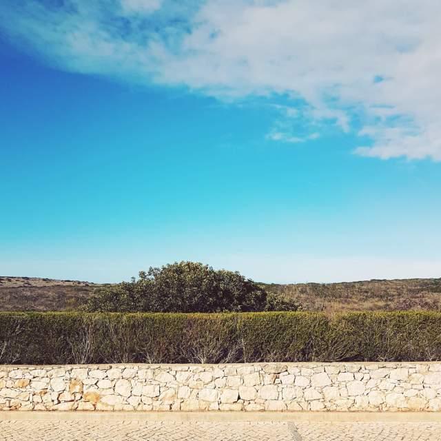 Algarve met kids: idyllisch familieresort Martinhal en met kids naar Sagres - hotel met zeezicht - Vilas Mimosa uitzicht natuurgebied