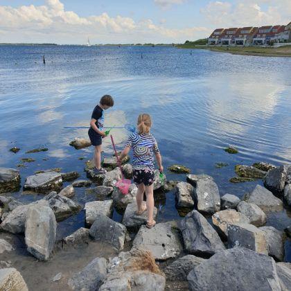 Schouwen Duiveland met kinderen - kindvriendelijk vakantiepark Landal Port Greve - krabbetjes vangen aan het Grevelingenmeer