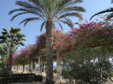 Ein kleiner Park in El Campello
