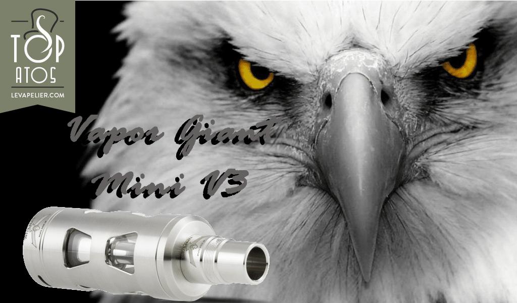 Vapor Giant Mini V3 par Niko Vapor