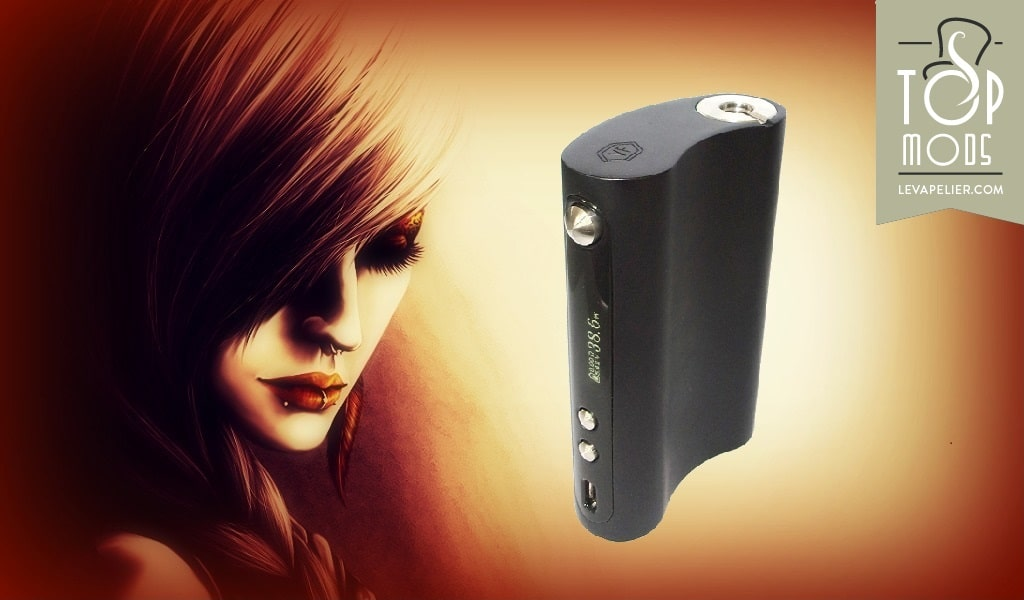 VaporFlask Classic by Wismec