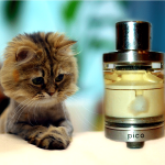 Pico RTA par YellowKiss