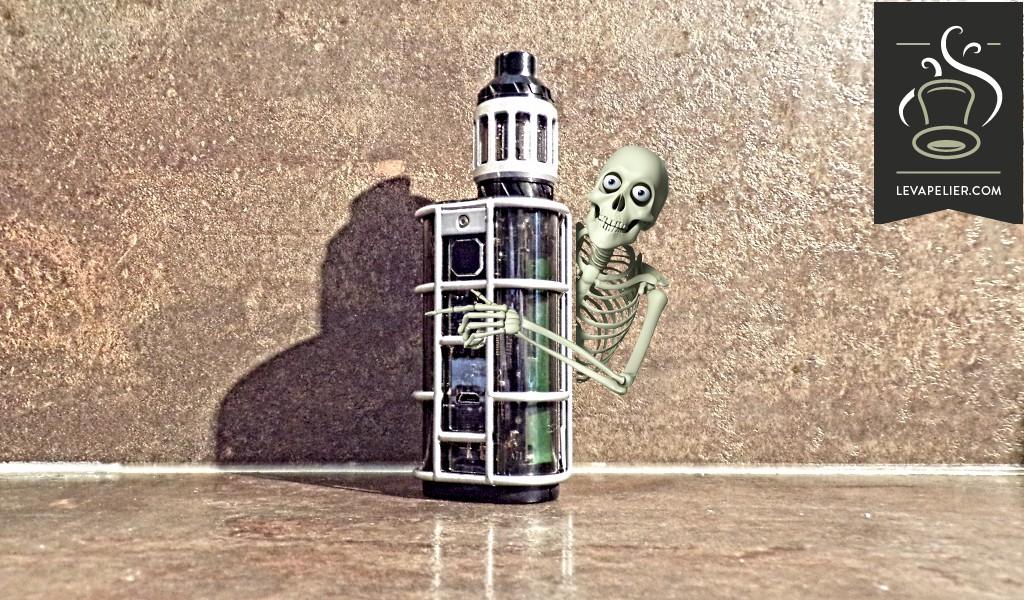 Exo Skeleton ES300 par Wismec