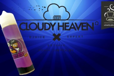 Double Grape V2 (Gamme Senses Brew) par Cloudy Heaven