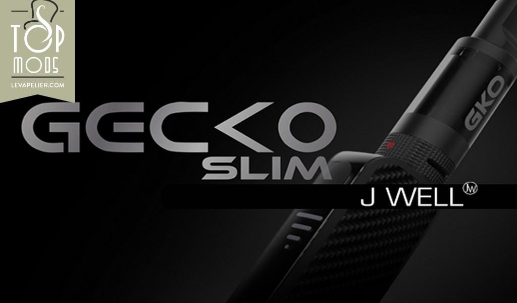 Gecko Slim par JWell