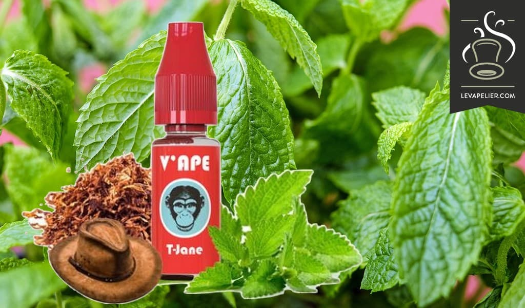 T-Jane (Red Range) van V'ape