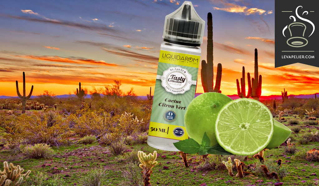 Lime Cactus (Tasty Collection Range) by Liquidarom