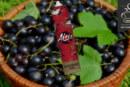 Blackcurrant by ZAP! Juice