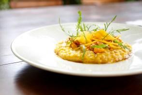 Bastide de Moustiers : Petit épeautre de Sault cuisiné comme un risotto, courge de nos jardins liée d'un croquant de Provence. Crédit Photo @Bordes