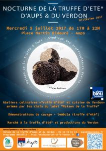 Nocture truffe