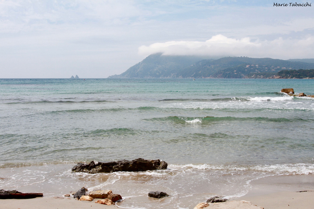 Le Cannier, La Seyne-sur-Mer
