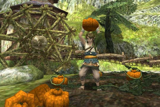 Link from Legend of Zelda Twilight Princess game series collecting pumpkins for Good Soup recipe.