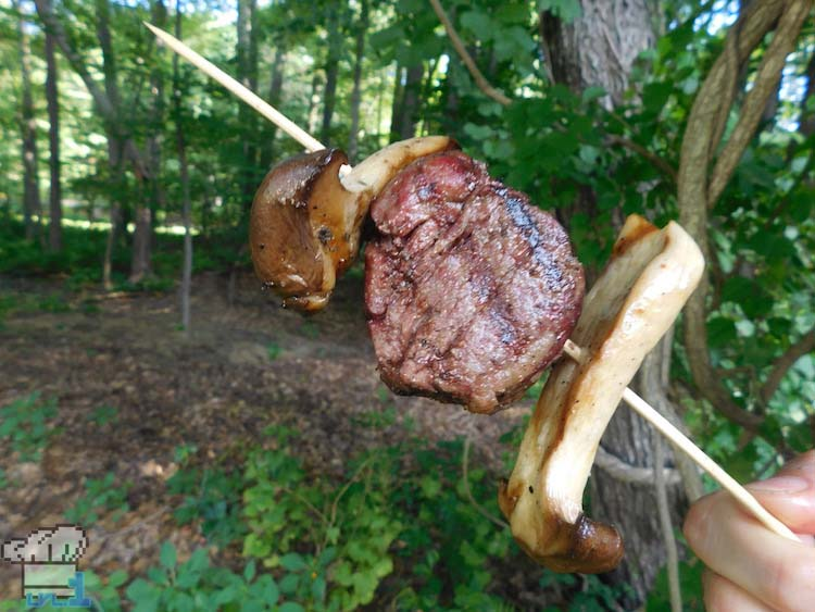 Hearty Meat and Mushroom Skewer from the Legend of Zelda Breath of the Wild game series.