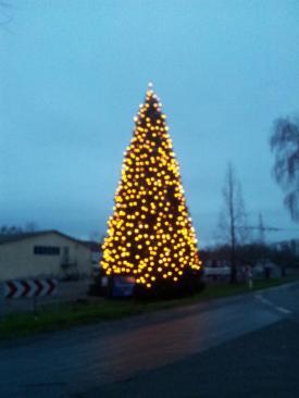 Weihnachtsbaum-Schiffswerft-2014-14