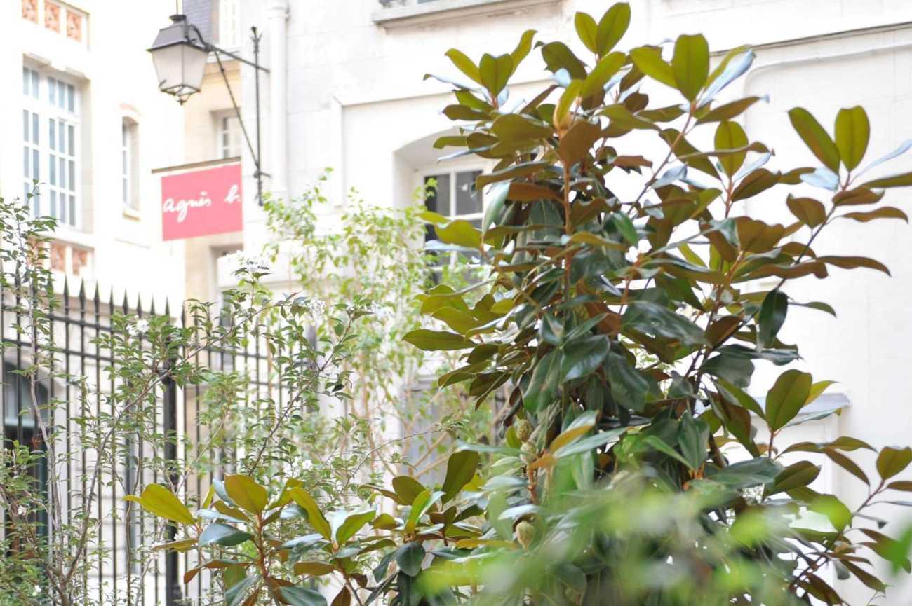 Agnès B. Décoration végétale Le Vert à Soi