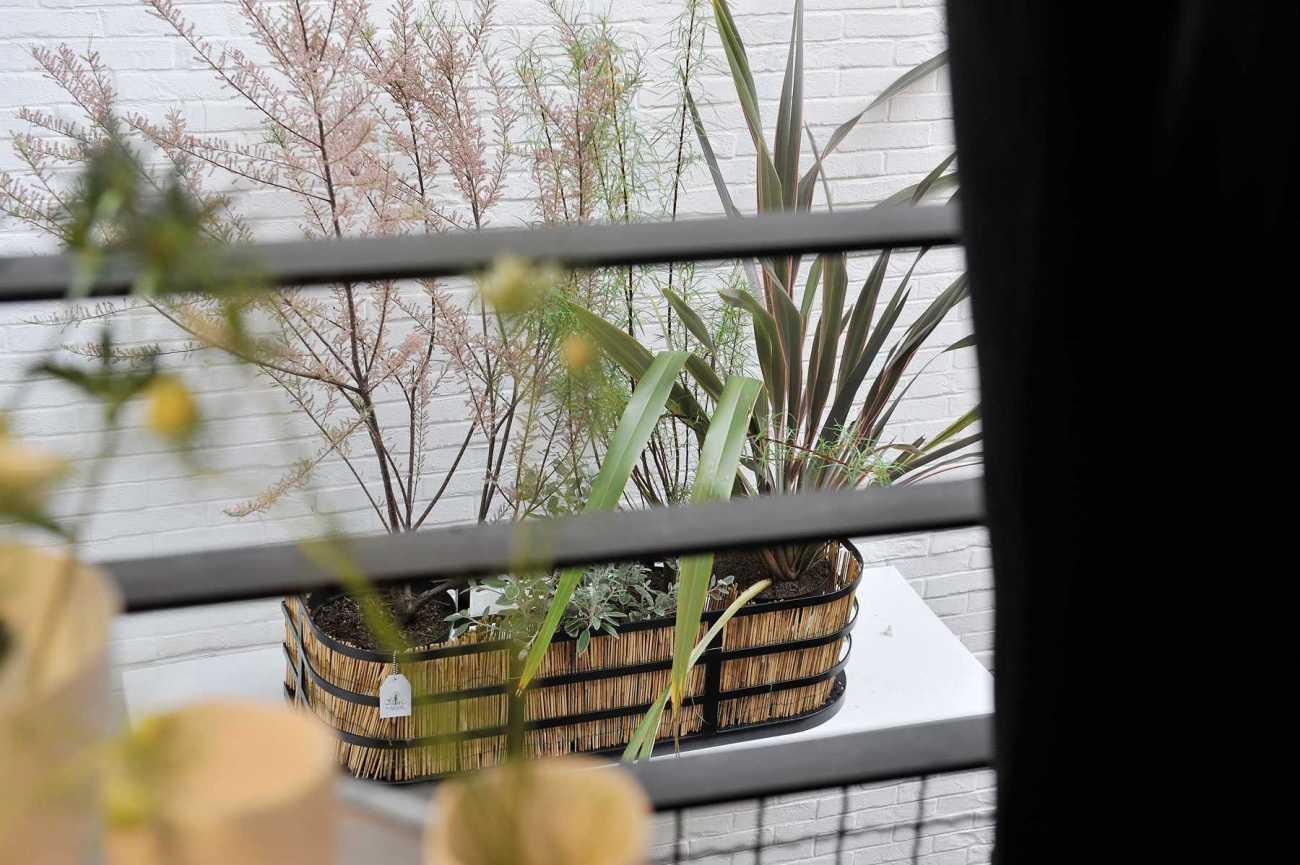 Jardinière Décoration végétale Le Vert à Soi. Merci