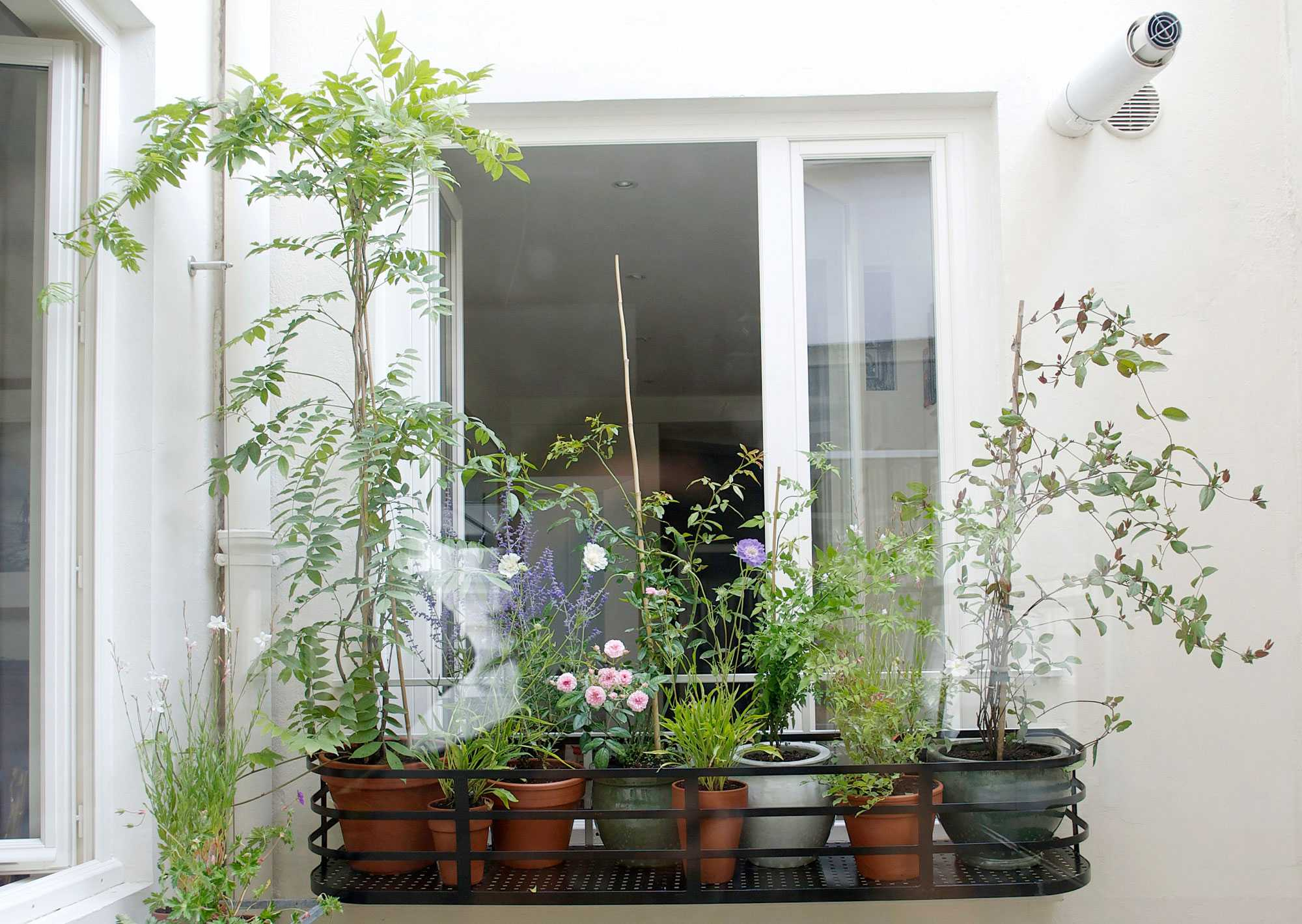 rue du pont aux choux le vert soi. Black Bedroom Furniture Sets. Home Design Ideas
